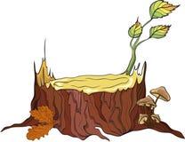 Moignon et champignons de couche d'arbre, détaillés   illustration stock