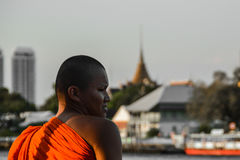 Moine asiatique Image libre de droits