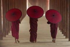 Moine bouddhiste Photos stock