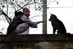 Moine bouddhiste jouant avec un chien égaré Image stock