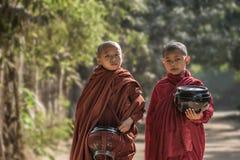 Moine de Myanmar Images libres de droits