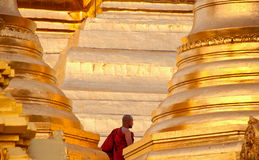 Moine de Shwedagon Image stock