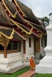 Moine du Laos Photos libres de droits