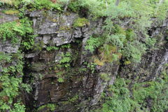 Moine Schist rocks on sidewall of gorge, ferns and trees Royalty Free Stock Images
