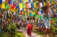 Moine tibétain parmi les drapeaux colorés Images stock