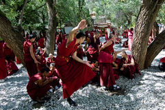 Moine tibétain Photographie stock libre de droits