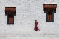 Moine Walking Photo libre de droits