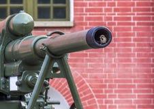 Moineau dans l'arme à feu images libres de droits