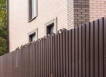 Moineaux sur une frontière de sécurité Images stock