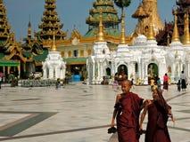 Moines de jeunes de Myanmar Image libre de droits