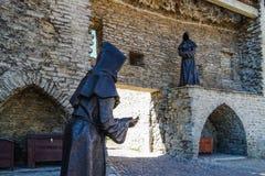 Moines noirs à Tallinn image stock