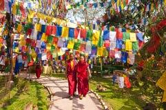 Moines tibétains, Darjeeling Photos stock