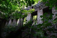 Moinho abandonado Foto de Stock Royalty Free
