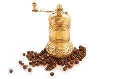 Moinho de pimenta do ouro Foto de Stock