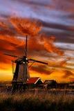 Moinho de vento à terra de Sailer da blusa bonita Fotografia de Stock Royalty Free