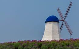 Moinho de vento Imagem de Stock