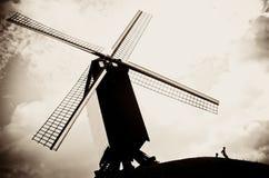 Moinho de vento de Bélgica Fotografia de Stock