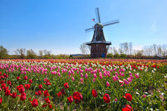 Moinho de vento de madeira em Holland Michigan fotos de stock royalty free