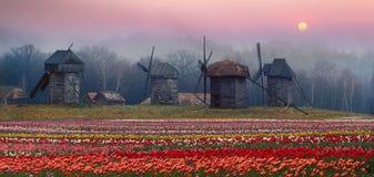 moinho de vento de madeira russian Imagem de Stock