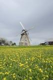 Moinho de vento em um campo do dente-de-leão Fotos de Stock Royalty Free