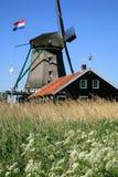 Moinho de vento em Zaanse Schans Fotografia de Stock Royalty Free