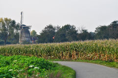 Moinho de vento holandês em cores do outono Fotografia de Stock Royalty Free