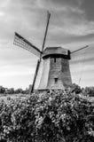 Moinho de vento holandês preto e branco Imagem de Stock