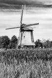 Moinho de vento holandês preto e branco Foto de Stock Royalty Free