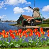 Moinho de vento holandês de Zaanse Schans Imagens de Stock Royalty Free