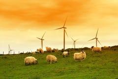 Moinho de vento moderno no crepúsculo Foto de Stock