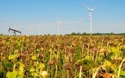 Moinho de vento no.3 Fotografia de Stock Royalty Free