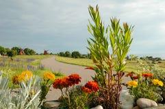 Moinho de vento no fundo com estrada e as flores selvagens Imagens de Stock Royalty Free