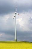 Moinho de vento no midle do campo da agricultura Fotografia de Stock Royalty Free