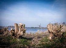 Moinho de vento nos Países Baixos Fotos de Stock Royalty Free