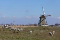 Moinho de vento perto de Aarlanderveen nos Países Baixos Foto de Stock