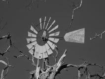 Moinho de vento quadro com os membros de árvore inoperantes imagem de stock