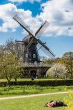 Moinho de vento velho Imagem de Stock