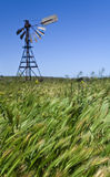 Moinho de vento velho em Austrália Imagens de Stock