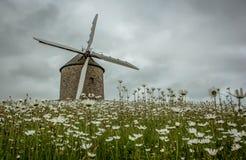 Moinho de vento velho em Brittany, França fotografia de stock royalty free