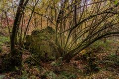 Moinho velho na floresta de Peitieiros fotografia de stock royalty free