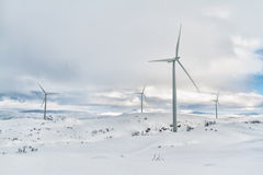 Moinhos de vento árticos Imagens de Stock