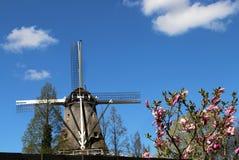 Moinhos de vento da Holanda fotografia de stock royalty free