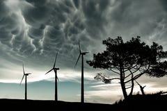 Moinhos de vento e árvore na luz traseira fotos de stock