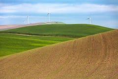 Moinhos de vento e campos de trigo fotografia de stock royalty free