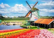 Moinhos de vento holandeses Fotografia de Stock