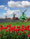 Moinhos de vento na Holanda Fotos de Stock Royalty Free