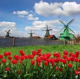 Moinhos de vento na Holanda com canal Imagem de Stock