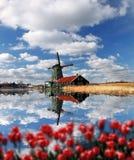 Moinhos de vento na Holanda com canal Foto de Stock Royalty Free