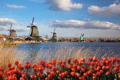 Moinhos de vento na Holanda com canal Foto de Stock