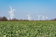 Moinhos de vento no campo Fotos de Stock
